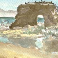 watercolor sketch